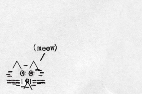===|||=== /\ O O . . /\ /\ - - - - - - - - - - - - - - - o o / (meow)
