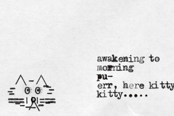 ===|||=== /\ O O . . /\ /\ - - - - - - - - - - - - - - - o o awakening to morning pu u- err, here kitty kitty.....