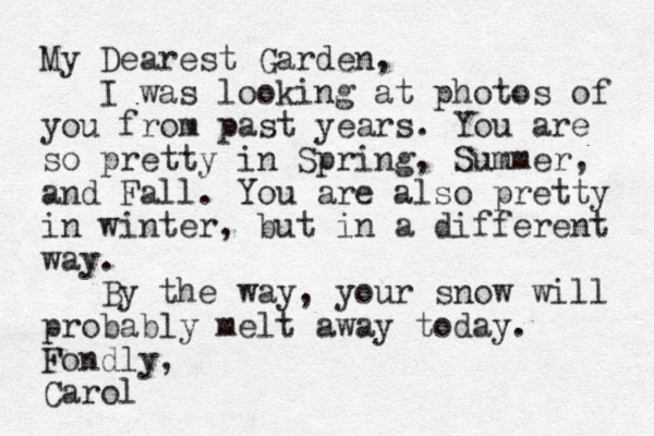 My Dearest Garden, I was looking at photos of you from past years. You are so pretty in Spring, Summer, and Fall. You are also pretty in winter, but in a different way. By the way, your snow will probably melt away today. Fondly, Carol