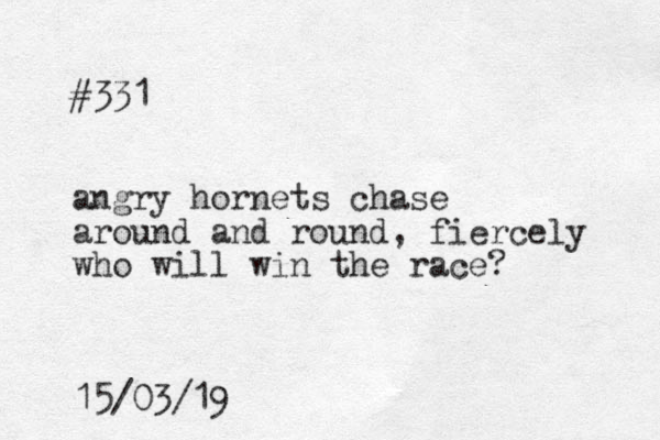 #331 angry hornets chase around and round, fiercely who will win the race? 15/03/19