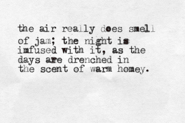 the air really does smell of jam; the night is imfused with it, as the days are drenched i n the scent of warm homey.