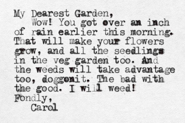 My Dearest Garden, Wow! You got over an inch of rain earlier this morning. That will make your flowers grow, and all the seedlings in the veg garden too. a And the weeds will take advantage too, doggonit. The bad with the good. I will weed! Fondly, Carol