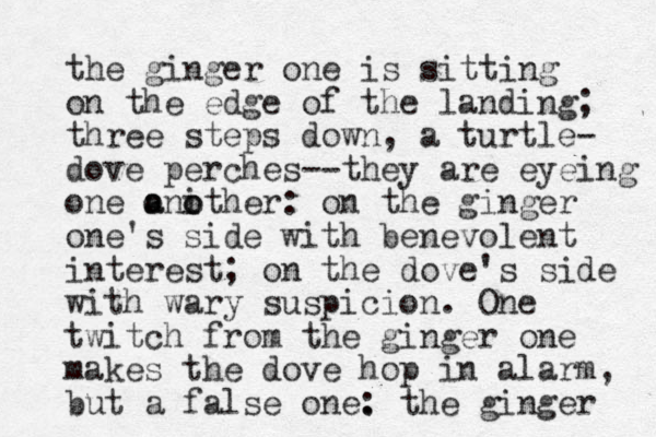 the ginger one is sitting on the edge of the landing; three steps down, a turtle- dove perches--they are eyeing one o a anither o o : on the ginger one's side with benevolent interest; on the dove's side with wary suspicion. One twitch from the ginger one makes the dove hop in alarm, but a false one. : the ginger