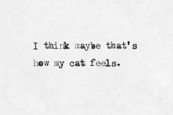 I think maybe that's how my cat feels.