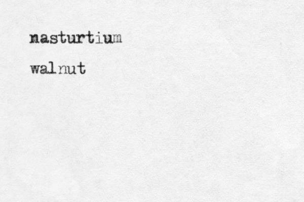 nasturtium walnut