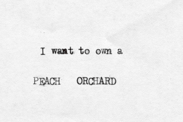 I want to own a PEACH ORCHARD
