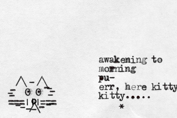 ===|||=== /\ O O . . /\ /\ - - - - - - - - - - - - - - - o o awakening to morning pu u- err, here kitty kitty..... *